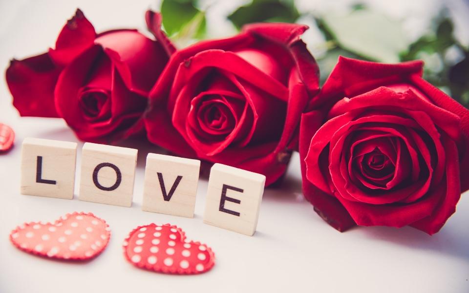 Κόκκινα τριαντάφυλλα: τα πιο ρομαντικά λουλούδια στον κόσμο